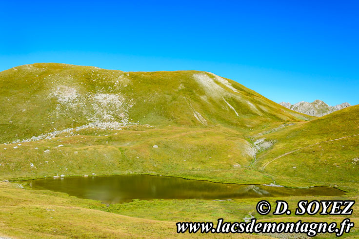 Photo n°201507130 Lac de Néal (2453m) (Queyras, Hautes-Alpes) Cliché Dominique SOYEZ Copyright Reproduction interdite sans autorisation