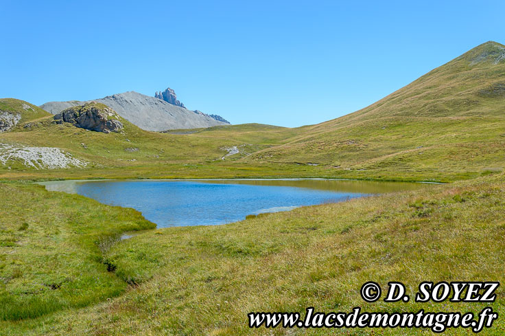 Photo n°201507121 Lac du Cogour (2479m) (Queyras, Hautes-Alpes) Cliché Dominique SOYEZ Copyright Reproduction interdite sans autorisation